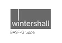 logo-wintershall.jpg